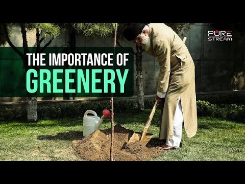 The Importance of Greenery   Imam Sayyid Ali Khamenei   Farsi sub English